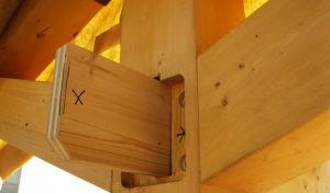 Giunto particolare legno