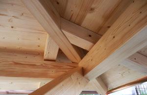 legno particoalre giunto