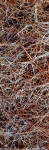 Fibra di Cocco: materiale isolante